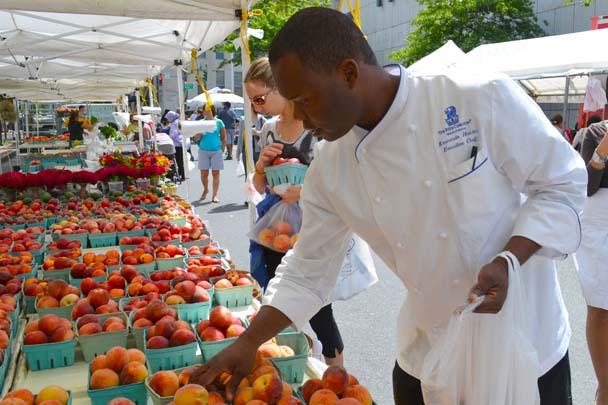 white plains farmers market